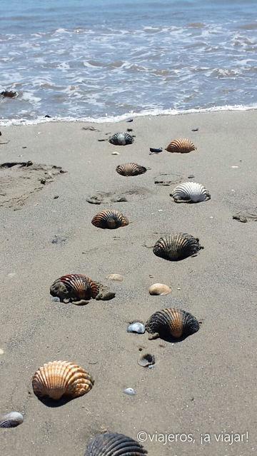 Playas Estrecho. El Rinconcillo