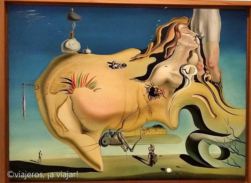 Dali, arte en Reina Sofía