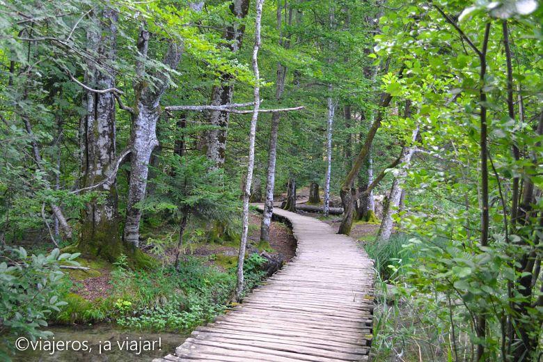 caminando-por-el-bosque-plitvice