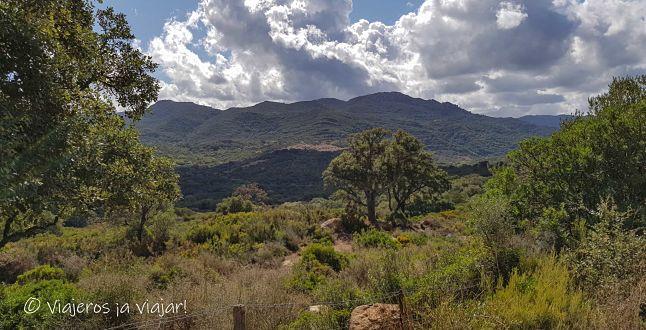 Qué ver en el Campo Gibraltar